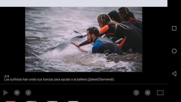Yon Sampedro - Konporta Surf
